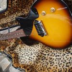 ビリー・ジョー・モデルのギターケース