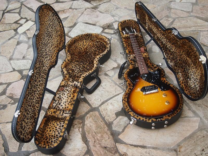 ギターを収納した状態のケース
