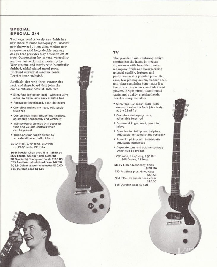 ギターにくらべて高価なケースとZipカバー