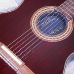 ちょっとチェット・アトキンス – Gibson Chet Atkins CE