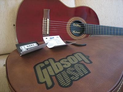 チェット・アトキンス・モデルのギターケース