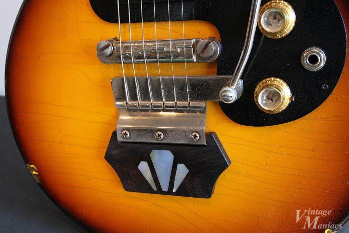 エボニーブロックとヴァイブローラを搭載したギター