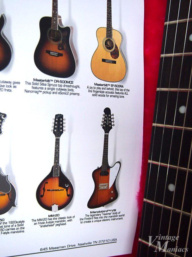 カタログに掲載された8弦のマンドリン・ファイヤーバード