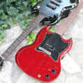 sg-junior-large-pickguard-00