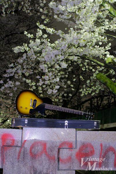 桜とレスポール・ジュニア
