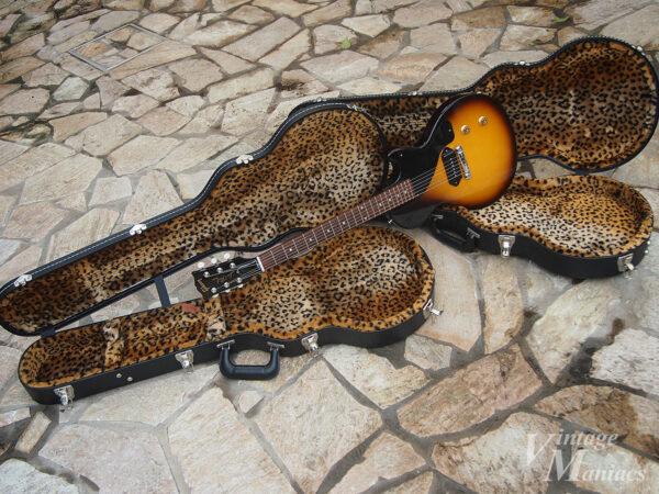 ヒョウ柄の内張りがされたギターケース